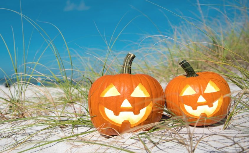 Things to Do in Virginia Beach this October | Virginia Beach Hotels